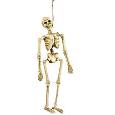Hanging Decor Skeleton Bone skeleton Hanging decoration Gerippe Halloween 40 cm
