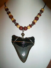"~*THE BEAST FROM BENEATH*~ BIG 2 5/8"" MEGALODON SHARK TOOTH NECKLACE JEWELRY*~"