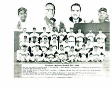 1960 VANCOUVER MOUNTIES 8X10 TEAM PHOTO  PCL  BASEBALL CANADA