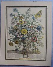 Robert Furber Lithograph Print November Matted, not framed