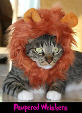"Jungle King Lion costume for cats and dogs size 7-11"" collar"