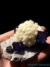 LARGE HIGH END Fluorite & Sphalerite Specimen ( Elmwood Mine ) CLOSED LOCATION