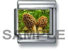 MOREL MUSHROOMS 9MM ITALIAN PHOTO CHARM LINK forest mushroom hunt woods