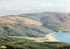 CORSE SERRA-DI-FERRO les arbousiers le golfe timbrée 1978