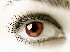 BROWN EYE HUMAN WOMAN GIRL ANATOMY PHOTO ART PRINT POSTER PICTURE BMP113A