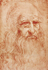 Self Portrait 1519 Leonardo da Vinci   Poster Print