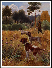 GERMAN SHORTHAIRED POINTER DOGS GREAT SHOOTING SCENE DOG PRINT POSTER