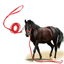 Strong Twisted Woven belt Horse Lead Rope With Trigger Clip Snap Hook- 3 Metre