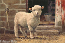 Sheep MARY Lil LAMB Autumn 11x14 Giclee Print