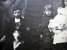 Antique Cabinet Card Photo Signed Children Collie sheep dog Australian Shepherd