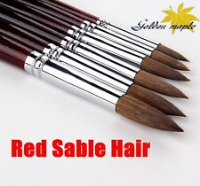 Kolinsky Sable Hair Round Artist Paint Brush Set Craft Painting Brush 6Pcs/Set
