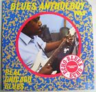 Real Chicago Blues LP~Johnny Shines~Walter Horton~Homeboy Edwards~Sam Firk~UK