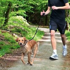 Dog Activity Jogging Lead Hand Held With Bunjee Style Leash