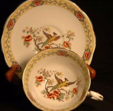 Royal Albert Yellow Banded Peacock Cup and Saucer - 1925