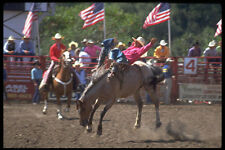 599093 Bareback Riding Gerry Rodeo Upstate NY A4 Photo Print