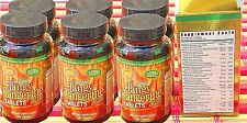 Youngevity Beyond TANGY TANGERINE TABLETS by Dr. Wallach, SIX PACK best value