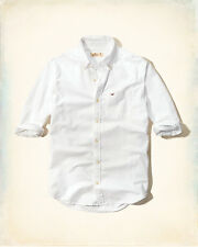 NWT Hollister by Abercrombie Men Logo Button Down Solid Oxford Shirt White L