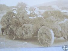 RPPC PEOPLE IN PARADE CAR W MAIDEN HAIR DECORATIONS 1910 REAL AZO PHOTO POSTCARD