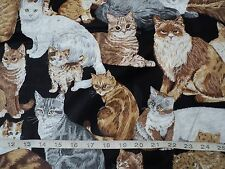 NEW Realistic Cats/Kittens Quilting Fabric 100% Cotton By Yard