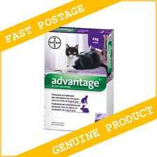 Advantage Purple Flea Control for Cats Over 9 lbs ( 4kg) 6 Month Supply (6Pack)