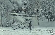 13562/ Foto AK, Gruss aus Schleswig, Nach einem Schneefall, 1898