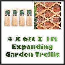 4 X 6 PIEDI x 1ft espansione in legno Trellis espandibile da esterni giardino impianto Arrampicata