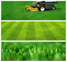 ORGANIC LAWN CARE SERVICE Green Company - Business Plan