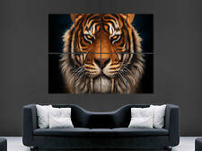 TIGER POSTER ANIMAL CAT SABERTOOTH WILD WALL LARGE IMAGE GIANT