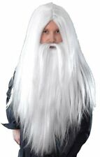 Wizard Wig & Beard Set White Halloween Medieval Fancy Dress Mens Adult NEW P5471