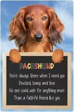 Dachshund 3D home hang up sign