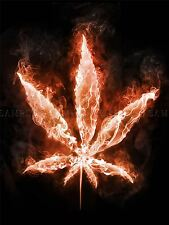 PAINTING MARIJUANA LEAF FLAMES FIRE WEED COOL BRIGHT POSTER PRINT BMP10028