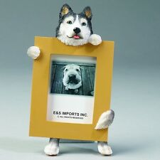 SIBERIAN HUSKY  ~  PICTURE FRAME #40
