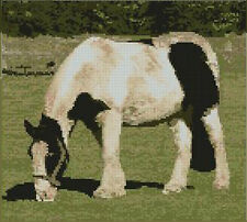 "Horse Pony Complete Counted Cross Stitch Kit 10"" x 9"" A2193"