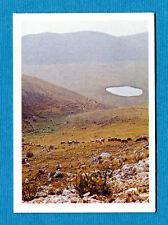 REGIONI D'ITALIA - Ed.Flash '81 - Figurina-Sticker n. 234 -New Nuova