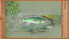 Indian Green Fish Painting Rare Handmade Aquatic Watercolor Miniature Marine Art