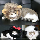Pet Costume Lion Mane Wig With Ears For Dog Cat Christmas Clothes Fancy Dress up