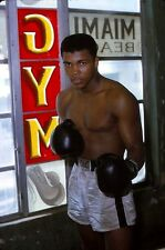 CASSIUS CLAY 8X10 PHOTO BOXING PICTURE 1963