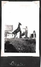 VINTAGE 1920S-30S HOLLYWOOD CALIFORNIA ANIMAL MAN TRAINER HORSES DOGS OLD PHOTO