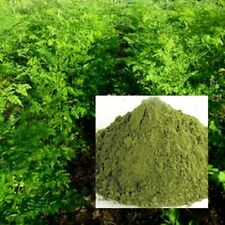 250G MORINGA OLEIFERA LEAF POWDER 100% PURE NATURAL HERB DRUMSTICK.