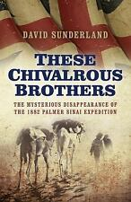 These Chivalrous Brothers: The Mysterious Disappearance of the 1882 Palmer Sinai