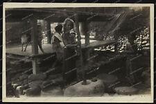 Bali-indonesia-Indonesien-Reis stampfen-Girl-Kreuzer Emden-Reise-Marine-19