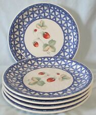 Savoir Vivre Country Delight ML023 Blue Trim Salad Plate set of 5