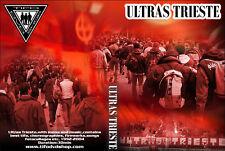 DVD ULTRAS TRIESTE 1976     (uts,triestina,curva furla,uts76,ultra,casuals,tifo)