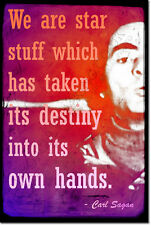 CARL SAGAN ART PRINT PHOTO POSTER GIFT SCIENCE - WITH QUOTE FROM COSMOS