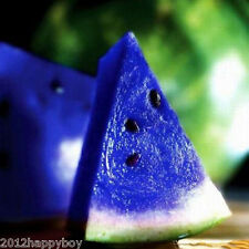 10Pcs Hot Selling Blue Watermelon Seed Vegetable Organic Home Garden Plant Seeds