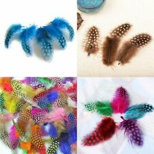 Feathers Art Design New Style Guinea Hen Feathers 50pcs Mixed Color Feathers