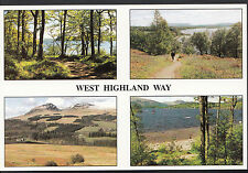 Scotland Postcard - Views of The West Highland Way   LC4569