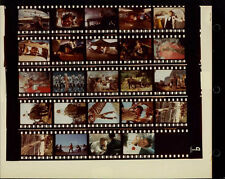 """Indiana Jones And The Temple Of Doom 8x10"""" Color Contact Sheet Photo #J8372"""
