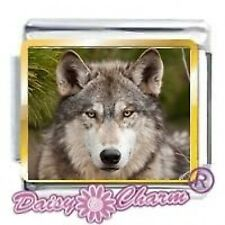 WOLF Pic - 9mm Daisy Charm by JSC Fits Classic Size Italian Charms Bracelet