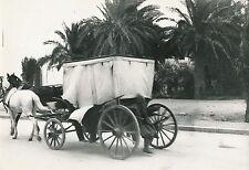LA VOITURE DES FEMMES DU HAREM c. 1935 -  Algérie - DIV 6525